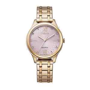 Dámské hodinky CITIZEN Classic EM0503-75X