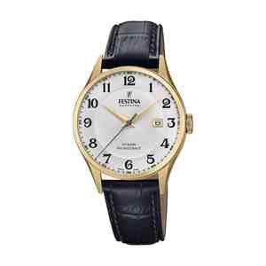 Pánské hodinky FESTINA Swiss Made F20010/1
